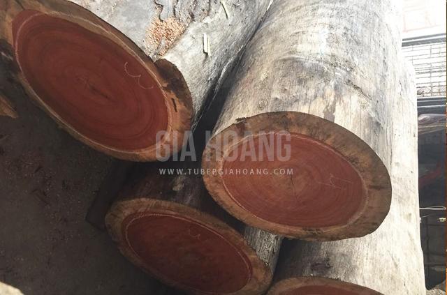 Khối gỗ Căm Xe tụ nhiên thô nhập khẩu Lào